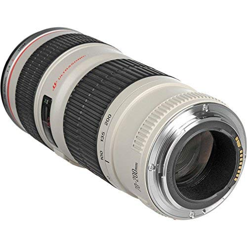 Canon EF 70-200mm f/4L USM Lens Bundle w/ 64GB Memory Card + Accessories, 3 Piece Filter Kit Color Multicoated 6 Piece Filter Kit (International Model) image 1